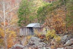 Oude kolonistencabine in het bos Royalty-vrije Stock Foto's