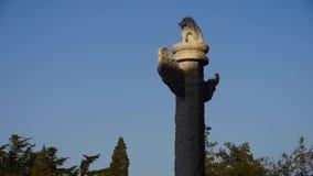 Oude koninklijke de leeuw marmeren pijler van het oosten in Peking China stock footage