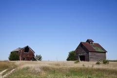Oude landbouwbedrijfgebouwen Royalty-vrije Stock Afbeeldingen