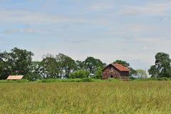 Oude landbouwbedrijfgebouwen Royalty-vrije Stock Foto's