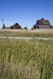Oude landbouwbedrijfgebouwen in het midden van gebied Royalty-vrije Stock Afbeeldingen