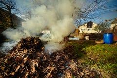 Oude landbouwer die dode bladeren branden Royalty-vrije Stock Afbeelding