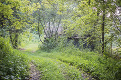 Oude Landweg Royalty-vrije Stock Fotografie