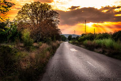 Oude landweg in de herfst Royalty-vrije Stock Foto's