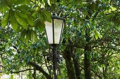 Oude lantaarn in een comfortabel de zomerpark royalty-vrije stock fotografie