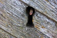 Oude lockhole Stock Fotografie
