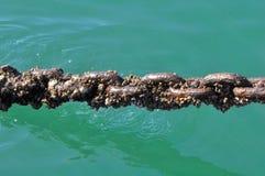 Oude maar sterke veerbootketting Stock Fotografie
