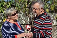 Oude man die een voorstel doen aan de oude vrouw royalty-vrije stock foto