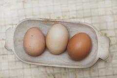 Oude mand met drie organische eieren. Stock Afbeelding