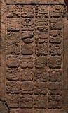 Oude Mayan hiërogliefen Stock Foto's