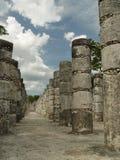 Oude mayan kolommen Stock Foto's