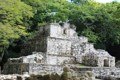 Oude Mayan ruïne in Quintana Roo, Mexico stock foto's