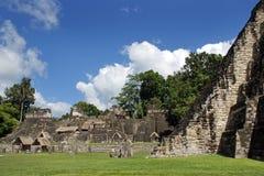 Oude Mayan ruïnes Royalty-vrije Stock Foto's