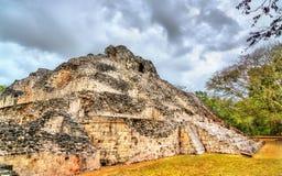 Oude Mayan ru?nes in Becan in Mexico stock afbeeldingen