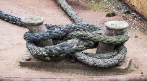 Oude meertroskabel Stock Fotografie