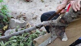 Oude mens die een tak van boom met een zaag in de tuin snijden stock video