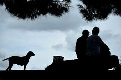 Oude mens en overzees en hond stock foto's