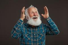Oude mens met een lange baard met grote glimlach Royalty-vrije Stock Afbeeldingen