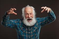 Oude mens met een lange baard wiith grote glimlach Royalty-vrije Stock Foto's