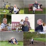 Oude mens met huisdieren stock foto's