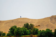 Oude mens in woestijn Stock Afbeeldingen