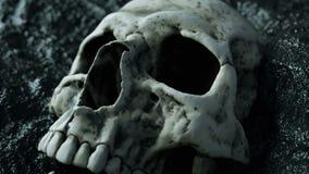 Oude menselijke schedel Apocalypsconcept Super realistische 4K animatie stock video