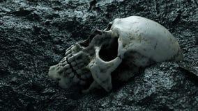 Oude menselijke schedel Apocalypsconcept Super realistische 4K animatie stock videobeelden