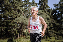 Oude mensenlooppas over weg in bos Stock Afbeelding