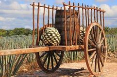 Oude Mexicaanse aanhangwagen royalty-vrije stock afbeelding