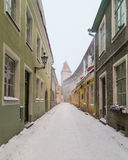 Oude Middeleeuwse Straten van Tallinn stock foto