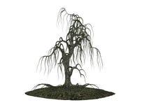 Oude mistycal boom Isoleer op witte achtergrond vector illustratie