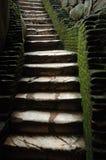 Oude mos-behandelde treden aan middeleeuwse gevangenis Royalty-vrije Stock Foto's