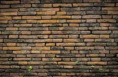 Oude muren Stock Afbeeldingen