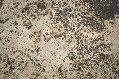 Oude muur concrete textuur en achtergrond Stock Foto's