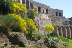 Oude muur en ruïnes van Pompei Stock Foto's