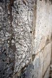 Oude muur van een synagoge met grote marmeren stenen Stock Foto's