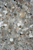 Oude muur van Ephesus-Ruïnes Stock Fotografie