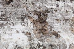 Oude muurtextuur Stock Afbeelding