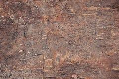 Oude natuurlijke houten bruine sjofele achtergrond Oude textuur van schors Stock Fotografie