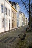 Oude Nederlandse straat Royalty-vrije Stock Foto's