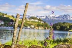 Oude omheining op een achtergrond van bergen en meer Stock Afbeeldingen