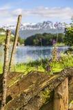 Oude omheining op een achtergrond van bergen en meer Royalty-vrije Stock Fotografie