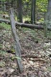 Oude omheiningslijn in het bos royalty-vrije stock afbeelding