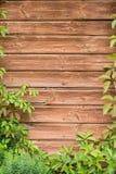Oude ontworpen muur Stock Afbeelding