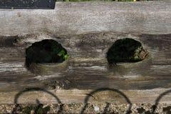 Oude Oude Houten Voorraden stock afbeeldingen