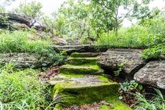 Oude oude steentreden met mos royalty-vrije stock afbeelding