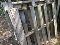 Oude pallets die omhoog tegen een omheining van de kettingsverbinding leunen royalty-vrije stock fotografie