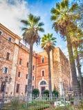 Oude palmtuin Stock Afbeelding