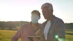 Oude papa die zijn zoon over landbouw onderwijzen en tablet houden, die op tarwegebied zich binnen bevinden, mooie mening tijdens stock video