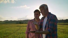 Oude papa met het volwassen zoon planning cultiveren en status op tarwegebied, het houden van tablet en het spreken over project stock videobeelden